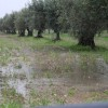 maltempo-sicilia-6